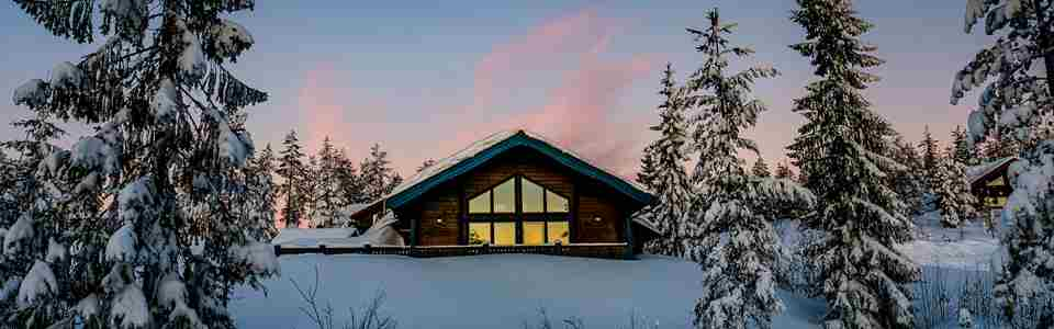Stuga i snötäckt miljö och granar runtomkring