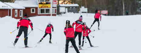 Flera barn som åker längdskidor efter ledare