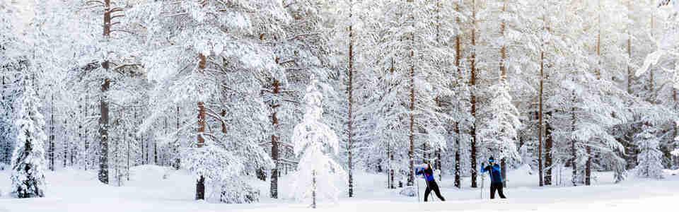 Längdåkare i snötäckt miljö